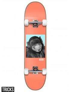 Skate Completo Tricks Skateboards Monkey 7.87