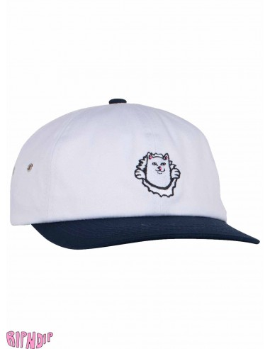 441f944f9be Ripndip Nermamaniac 6 panel Cap
