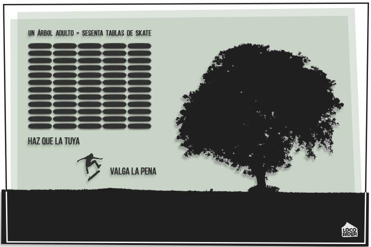 Tablas de skate elegir monopatín según la edad, altura y pie. « El mejor momento para plantar un árbol fue hace 20 años. El segundo mejor momento es ahora. »